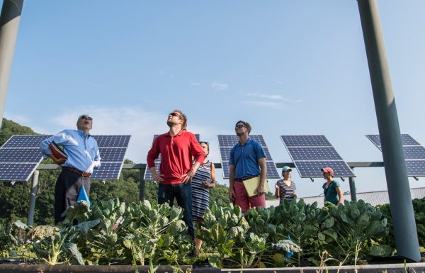 group of people looking at solar panels in garden